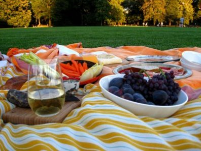 Picnic on the Great Lawn ii